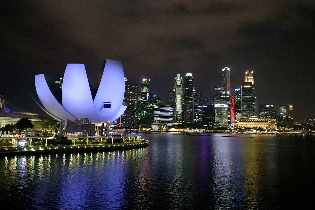 vista di notte dell'artiscience museum di singapore