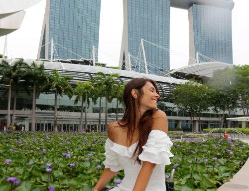 Singapore in carrozzina